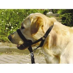Pet Pro ДОГ КОНТРОЛЬ дрессировочный поводок для собак