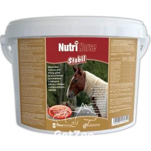 Biofactory Nutri Horse Stabil порошок 1 кг