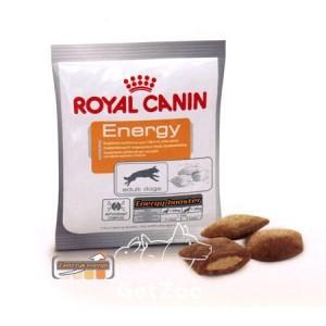Royal Canin Energy дополнительный корм для взрослых собак. 50 грамм