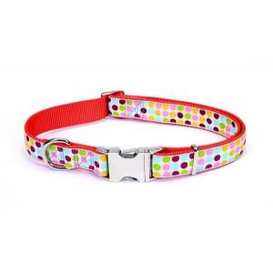 Coastal Pet Attire Ribbon ошейник для собак, 1,6 см x 45 см, расцветка точка